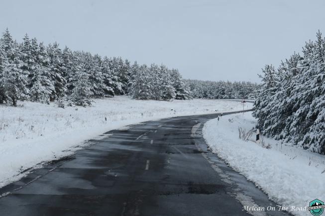 gurcistana-giderken-yol