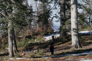 karüz yaylası kamp