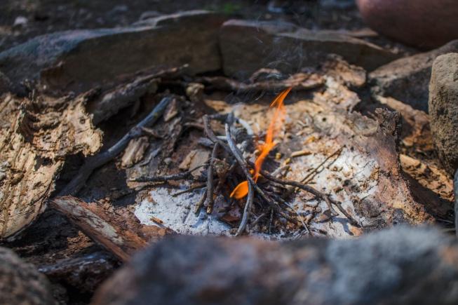 kamplarda doğayı korumak