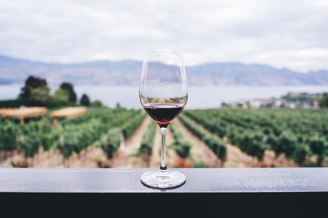 Kapadokya'da Görülecek Yerler şarap bağları